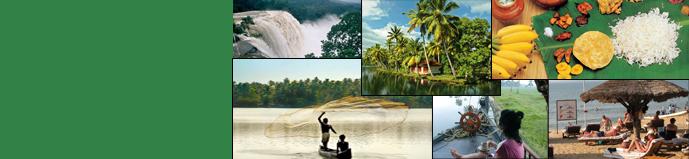 kerala-culinary-tour.jpg